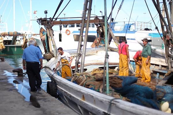 Fishing boat in the fish market of Denia