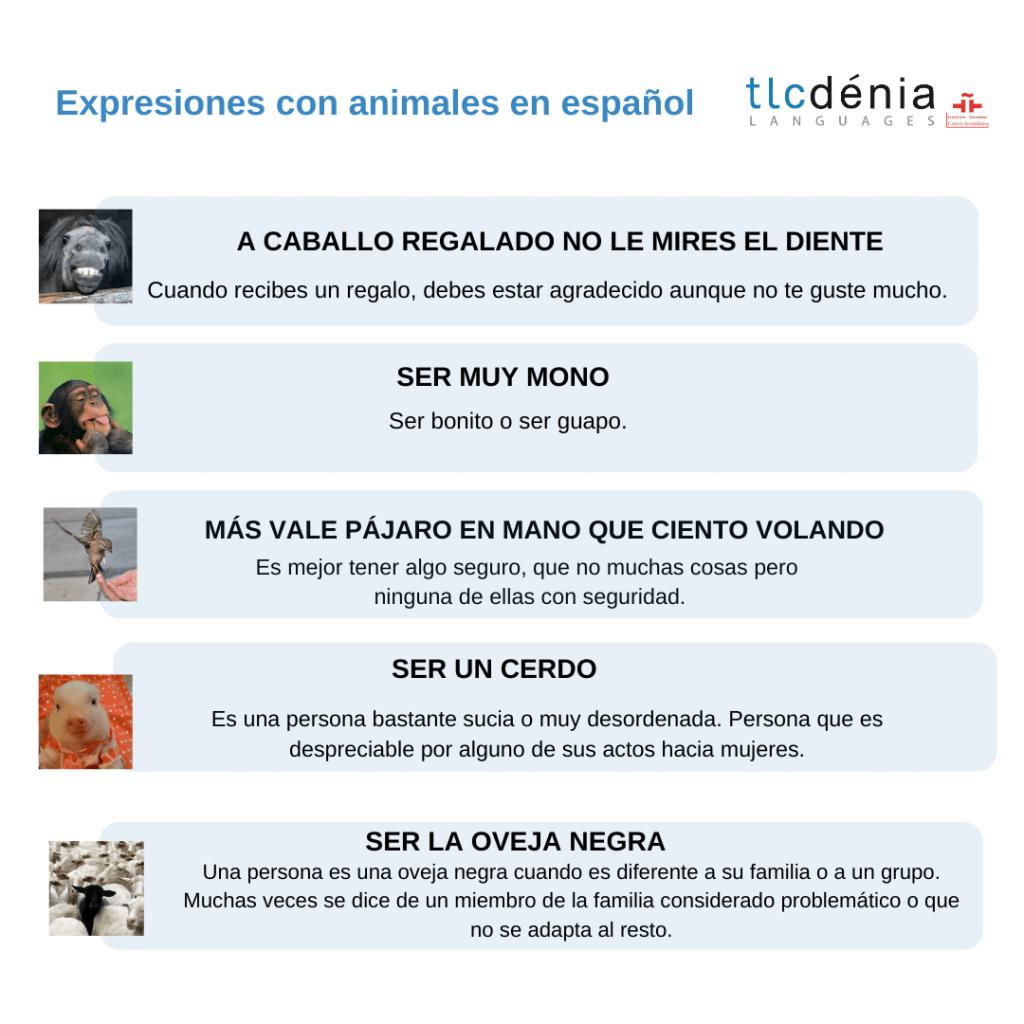 grafique avec des expressions en espagnol avec des animaux